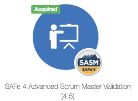 SAFeSASM4.5validation.png